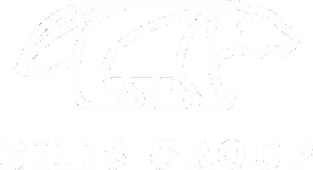 Dilis Group